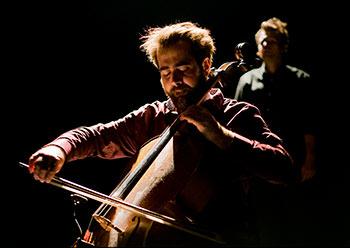 Troie-violoncelle